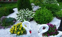 Рокарий— бесподобный сад на участке своими руками