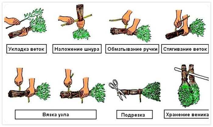 vyazka_venika